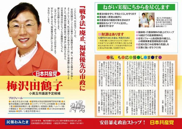 umezawa2015omote