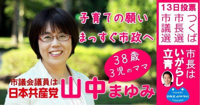 yamanaka201611