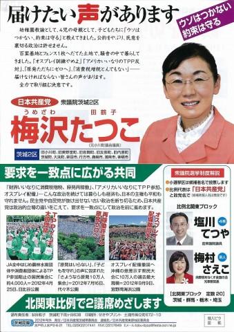 茨城2区 梅沢田鶴子
