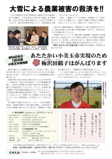 umezawa201403_omote