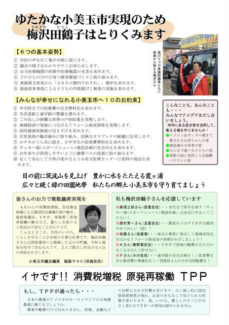 umezawa201403_ura